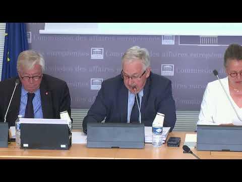 Commission des affaires européennes : présentation du rapport sur le pêche durable dans l'UE