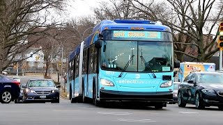 MTA New York City Bus : The Q44 +Select Bus Service+ Fleet....Soon To Be The Past, Present & Future!