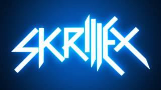 Skrillex MegaMix 2014 (Continuous) HD
