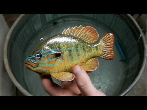 Laska's Decoys Collaborative Pumkinseed Sunfish Fish Decoy