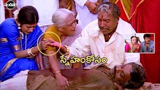 Chiranjeevi, Meena And Vijayak…
