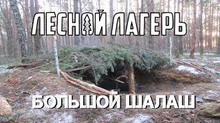 Лесной лагерь #1