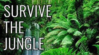 How to Survive the Jungle - EPIC HOW TO