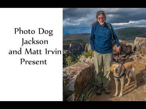 Photo Dog Jackson's Adventures & An Armchair Tour of the USA