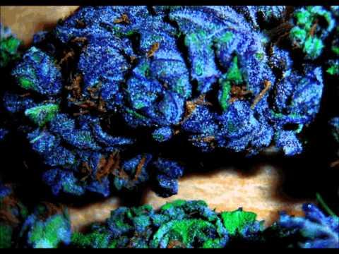 Blueberry Yum Yum Bass Boost