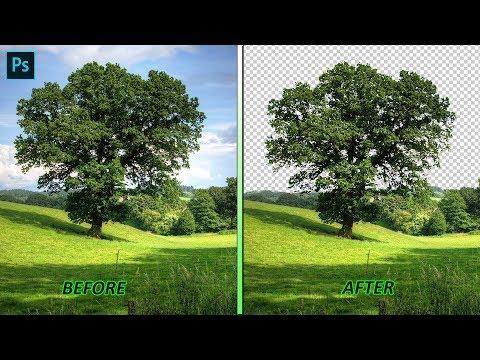 Remove Complex Background In Photoshop