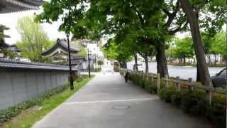 函館市電ぶらり旅その2 元町公園 五稜郭公園
