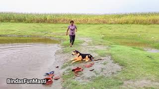 Must Watch New😂 Amazing Comedy Video 202 Just for Fun / Bindas Fun Masti