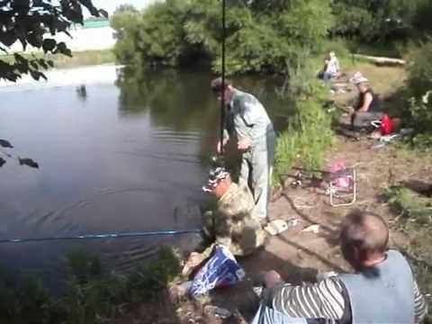 рыбалка в бородино москва видное