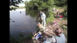 Рыбалка г.Видное