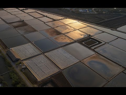 Over a Thai Salt Farm