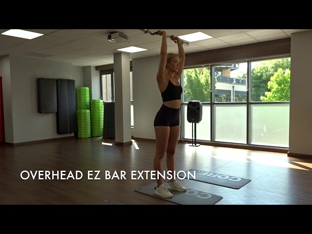 Overhead EZ Bar Extension
