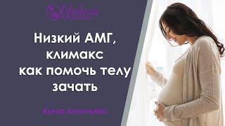низкий АМГ, климакс. Как помочь своему организму, увеличить шансы на зачатие
