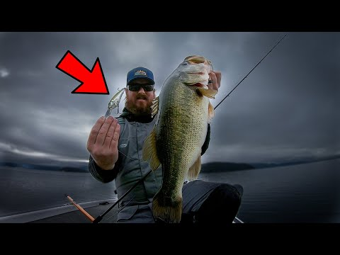 fishing-cold-water-crankbaits-for-big-winter-bass