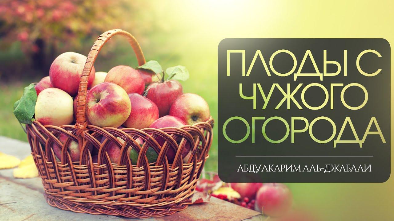 Плоды с чужого огорода