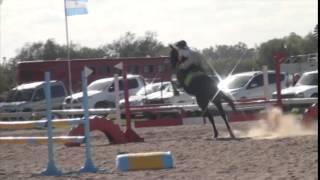 Repeat youtube video Milagros Lopez con Tronador JR 0,90mts 2do puesto