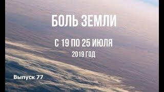 Катаклизмы за неделю с 19 по 25 июля 2019 г
