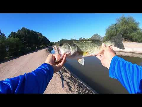 AZ Canal And Lake Fishing