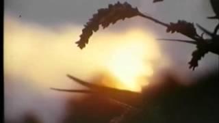LA STRADA DEL SOLE di Alessio Zerial