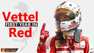 VETTEL - FIRST YEAR IN RED