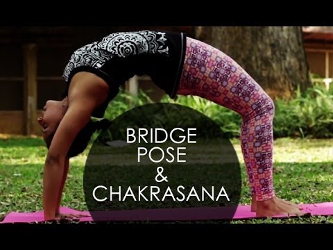backbend yoga poses chakrasana the wheel pose i 2  youtube