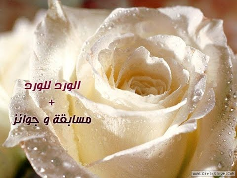 معاني الوان الورود ورسائلها مسابقة وجوائز من الجميله للتصميم Youtube