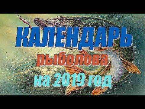 Календарь рыболова на 2019 год
