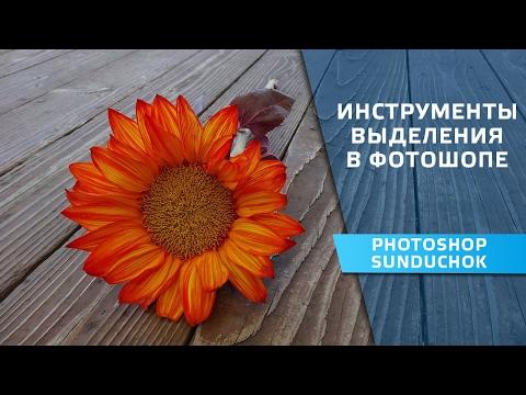 Инструменты выделения в фотошопе | Секреты выделения в фотошопе