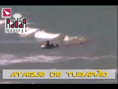 Câmera flagra momento exato do ataque de tubarão a turista no Recife