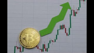 Every Investor Should Own Bitcoin - Bitcoin 2020 Reward Halving FOMO Is Here