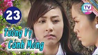 Tường Vy Cánh Mỏng - Tập 23 | Giải Trí TV Phim Việt Nam 2019