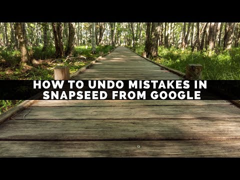 How To Undo Mistakes In Snapseed From Google