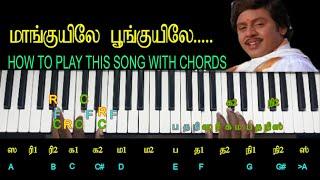 மாங்குயிலே பூங்குயிலே / HOW TO PLAY THIS SONG WITH CHORDS / MY MUSIC MASTER