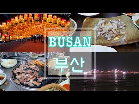 [KOREA TRAVEL VLOG] BUSAN - Eating Live Octopus! Jagalchi Market, Gwangalli Beach and more