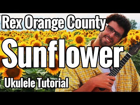 Rex Orange County - Sunflower - Ukulele Tutorial With Play Along