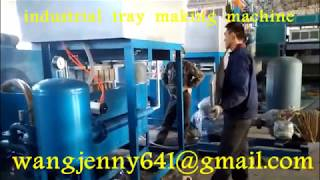 waste paper forming industrial tray machine