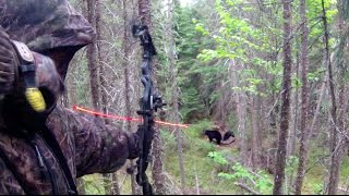 BEST COMPILATION AMAZING 25 SHOOT BOWHUNTING compilation 25 tir chasse à l'arc