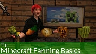 Tip: Minecraft Farming Basics