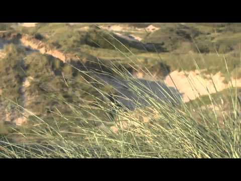 Egmond aan Zee - North Holland Full HD
