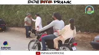 | DOG BITE PRANK | By Nadir Ali In P4 Pakao 2019
