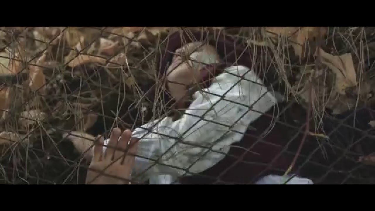 IL LUPO - Trailer -