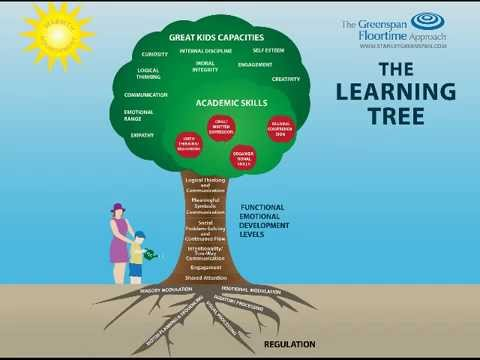 The Greenspan Floortime Approach: The Learning Tree Model