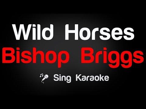 Bishop Briggs - Wild Horses Karaoke Lyrics