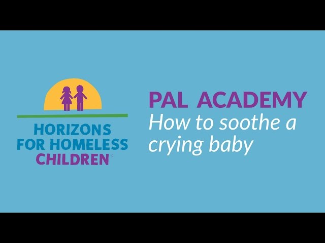 PAL Academy - 01 - Soothe a Crying Baby