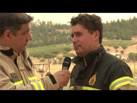 BOMBEROS DE CHILE - INCENDIO FORESTAL EN PUMANQUE REPORTE 2 SEÑAL ONLINE
