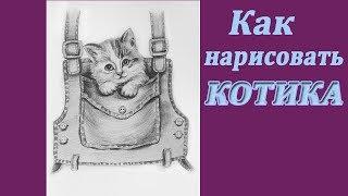 Как нарисовать кота карандашом | Рисуем котенка в кармашке | Art School