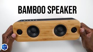AOMAIS LIFE 30W Bamboo Speakers Review
