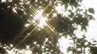 Natassa Ghisaidoobe - Soso krey me krey (Suripop XX)