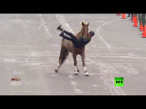 عروض فاشلة بالخيول في عرض عسكري  - نشر قبل 2 ساعة