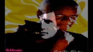 1966 - Roberto Carlos - Negro Gato